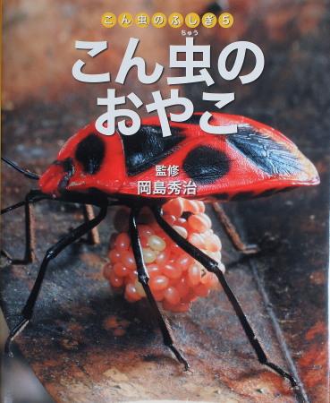 こん虫の親子表紙.jpg