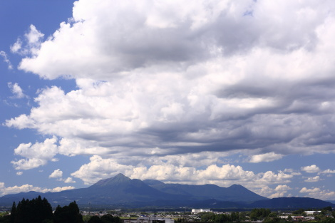 台風一過701A1693.JPG