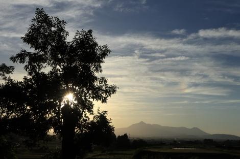 霧島山とクヌギIMG_5154.JPG