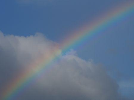 P8050019虹.jpg